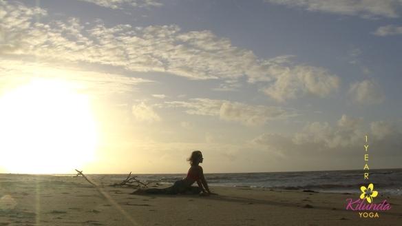 Beach_1year_2